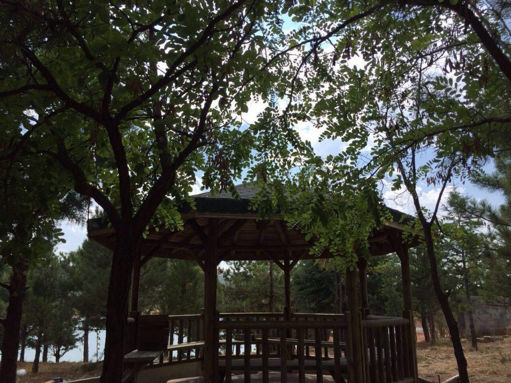 Atabey Sulama Göleti ve Piknik Alanı (2)